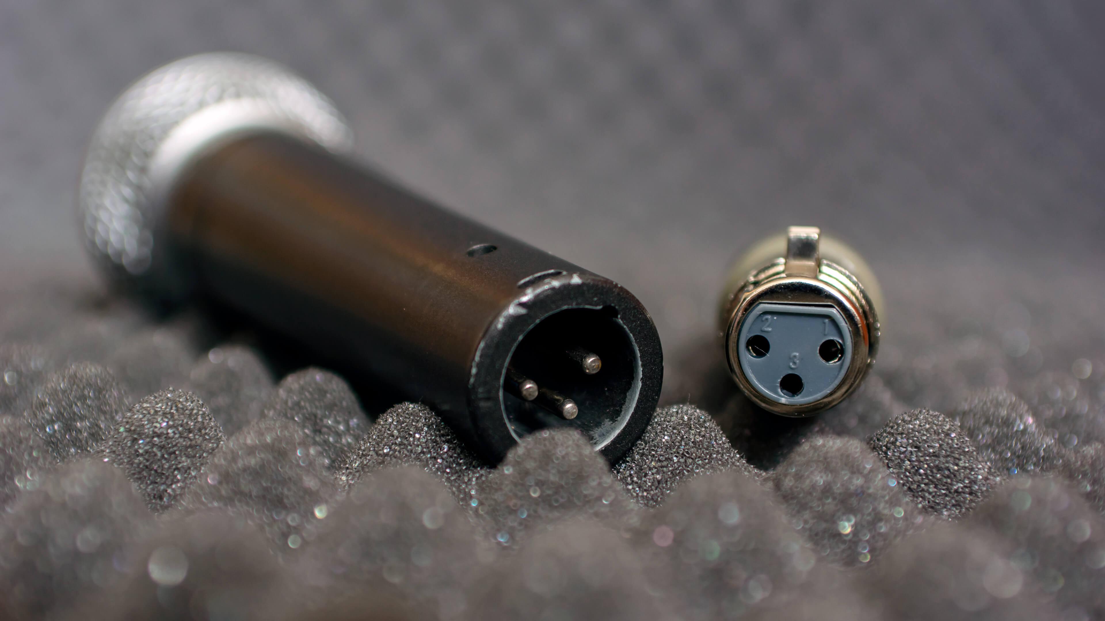 Foto van de xlr-aansluitingen van de Triton Fethead en een Shure SM58 microfoon.